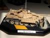 Iraqi T-55 Enigma